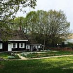 WHSAD Student Participate in Work-Based Learning at Wyckoff House Museum