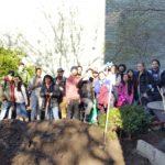 WHSAD Students Revitalize Power Street Garden